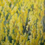 Sophie Labayle Colza / Rapeseed field