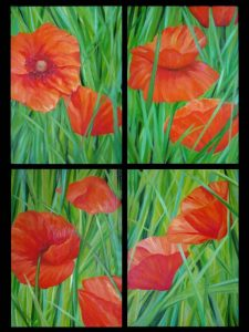 Sophie Labayle Poppies / Coquelicots 4