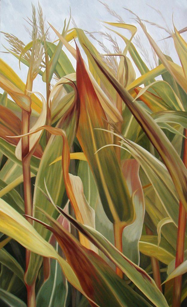 Sophie Labayle Corn field / Maïs Automne