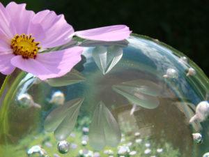 Spring Sophie Labayle Glass Nature Artist