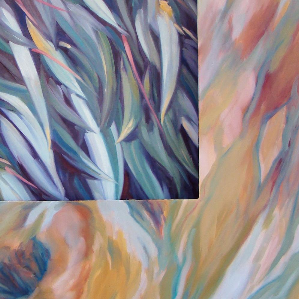 Eucalyptus carré