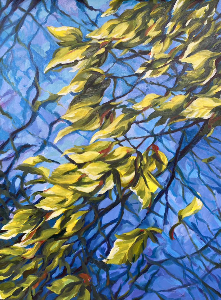 WOODS sophie labayle art nature paintings